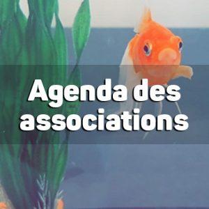 Agenda des associations